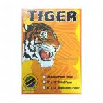 Tiger Legal Paper A4 Blue P01220