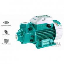 Total Peripheral Pump 1.0HP TWP17506
